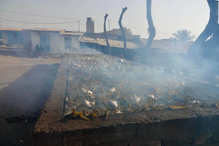 Gambia RonReizen visrokerij