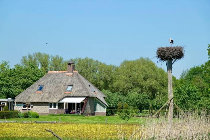 Nederland camper De Camper Club RonReizen ooievaar