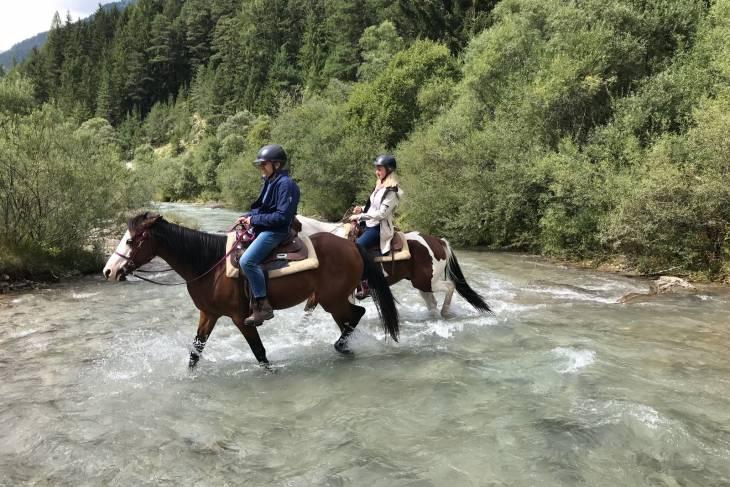 Paard rivier