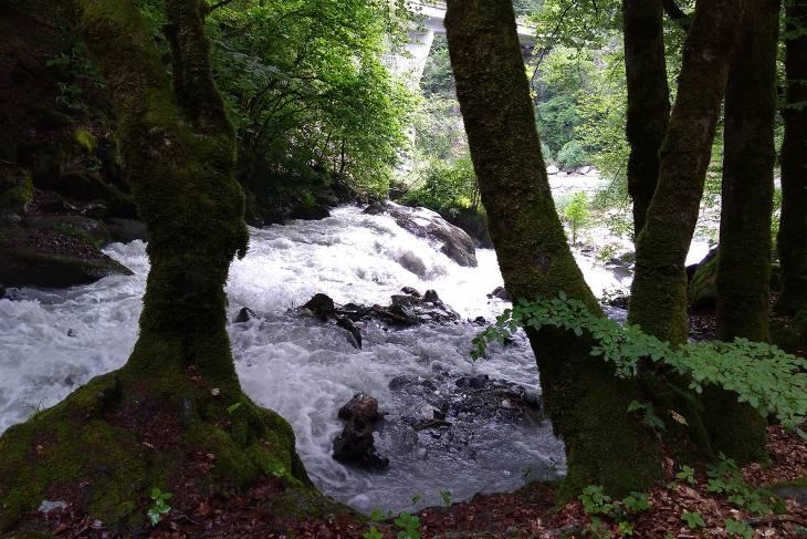 Wilde water tijdens hike