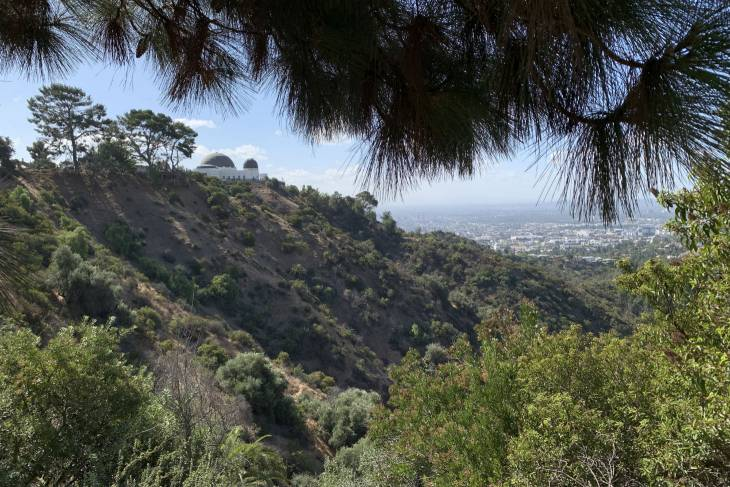Griffith Observatory in Los Angeles - RonReizen