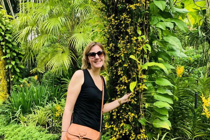 Kleurenpracht in Singapore Botanic Gardens - RonReizen