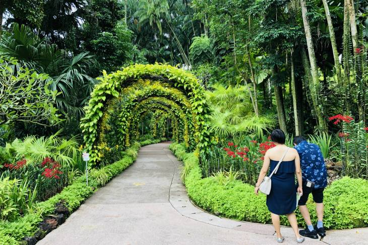 Rust in Singapore Botanic Gardens - RonReizen