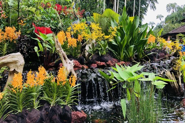 Singapore Bontanic Gardens - RonReizen