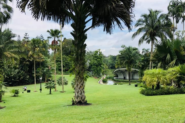 Botanische tuin in Singapore - RonReizen