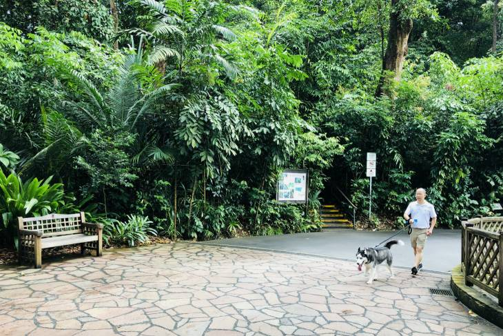 Singapore: locals in Botanic Gardens - RonReizen