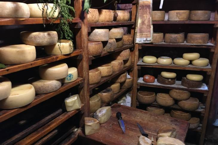 Voorraadkamer met pecorino kaas